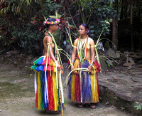 Yap Girls in Ceremonial Dress